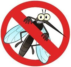 Mosquito Control, Mosquitoes Control Services - Pestcare Services India,  Gurgaon | ID: 19938853062