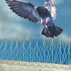 best bird control