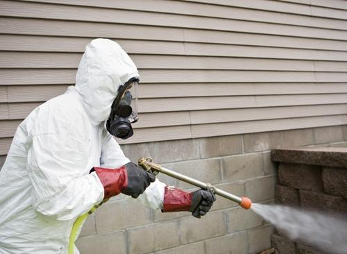 pest control by fumigation